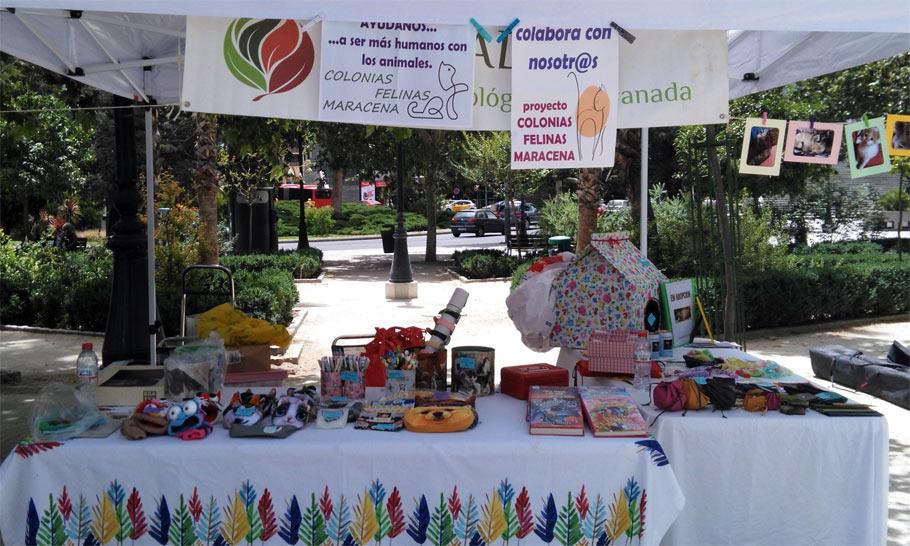 Colonias Felinas Maracena en Ecomercado de Granada